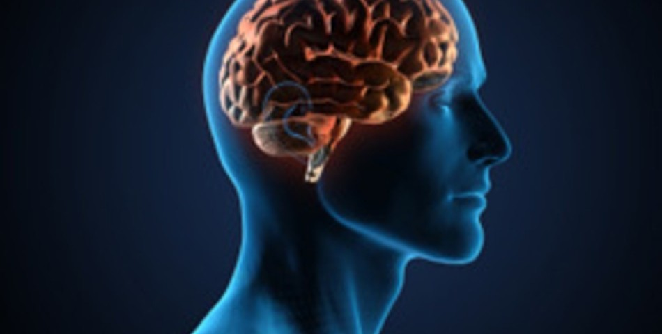 lavoro trovare psicologia sviluppo porfessionale